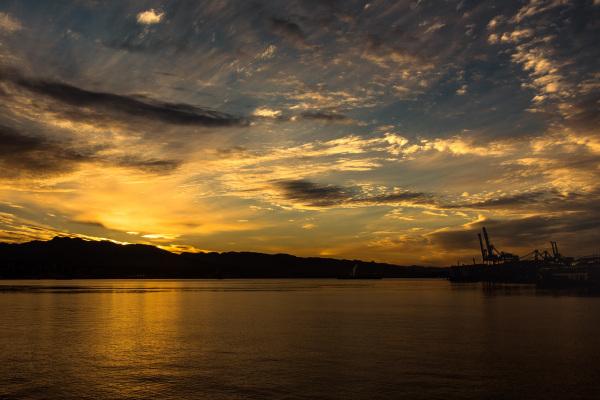 Sunrice-Vancouver